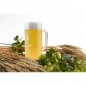 Preview: Bierkrug mit Gravur